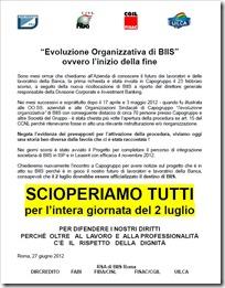 BIIS EVOLUZIONE ORGANIZZATIVA